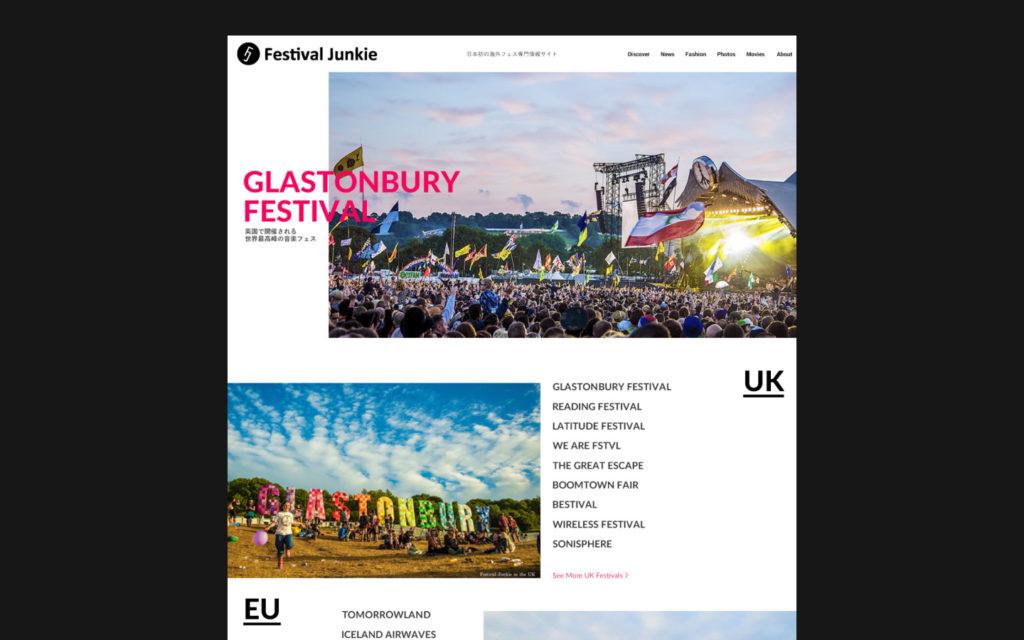Festival Junkie Concept